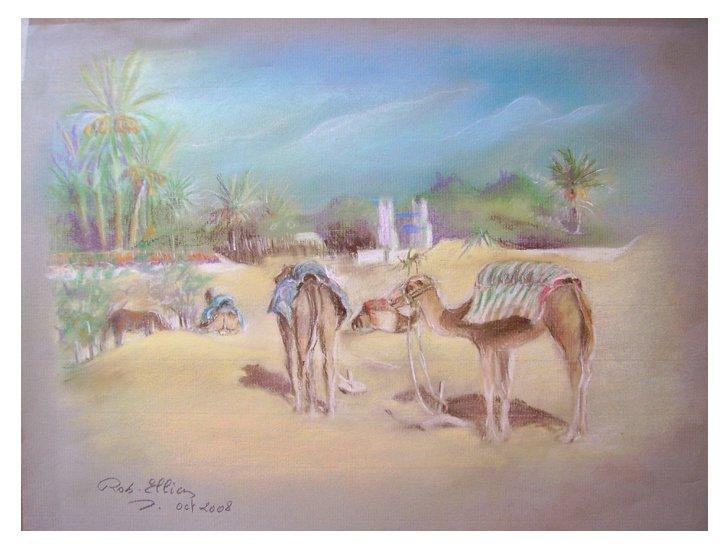 les chameaux