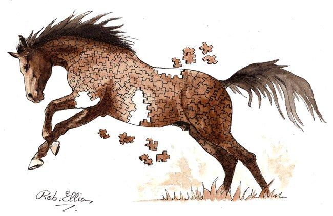 cheval planche 01
